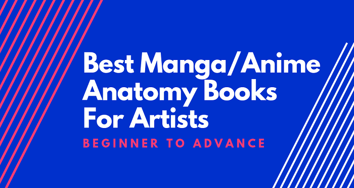 Best Manga Anatomy Books for Artists